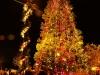 treelight10