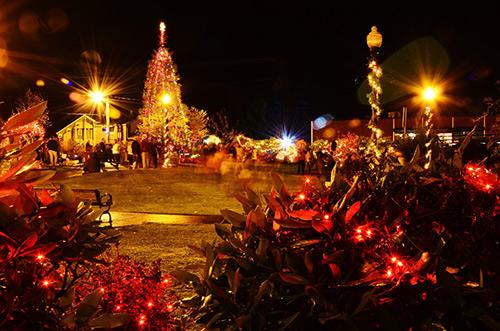 treelight14