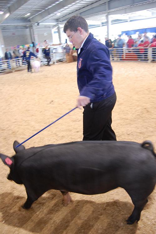 Marion County Fair, 2009