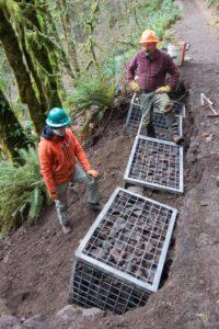 Installation of gabions on Maple Ridge Trail. Arthur Mills